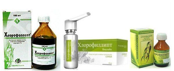 Польза и состав хлорофиллипта